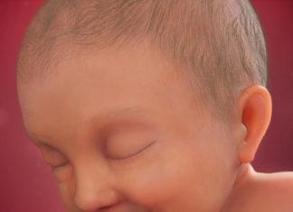 Samen Zwanger _ 37 weken zwanger - trimester 3 week 37 foto (3)