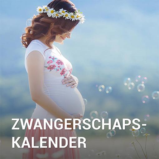 Samen Zwanger - Zwangerschapskalender