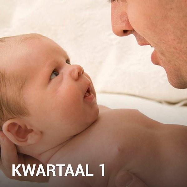 Samen Zwanger - Babykalender Kwartaal 1