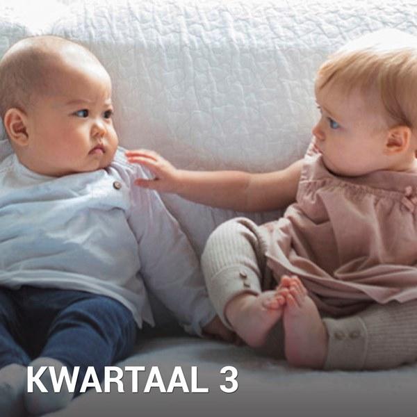 Samen Zwanger - Babykalender Kwartaal 3